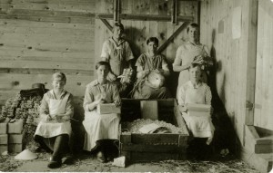 Glaspackning 1925