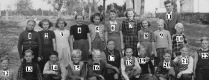 Notteback skola 1950-51 nummer